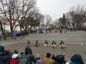 Traditional music performers