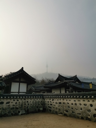 Architecture with the view of Namsan Tower